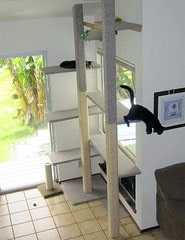 installations-intérieur-chats